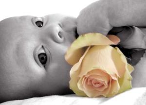 meisje met een roos